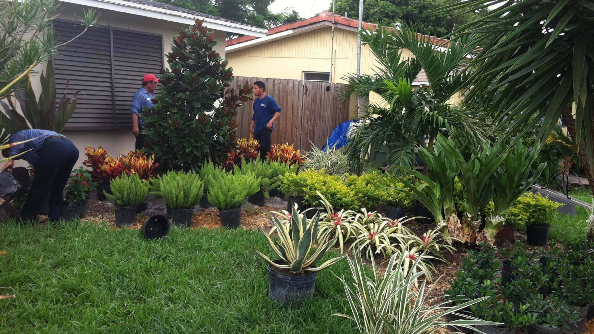 Go2Scape.Inc employees working on a residential home in Parkland, FL